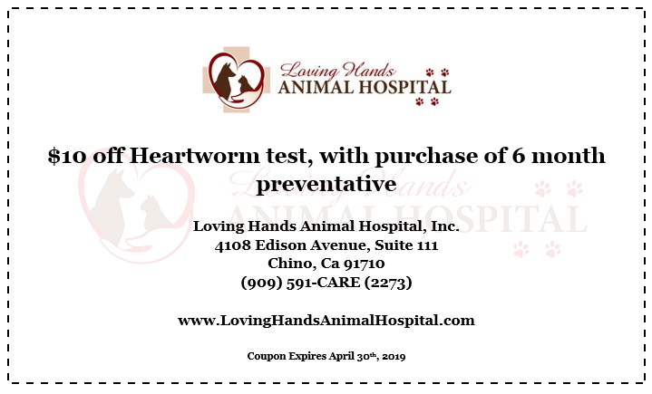 Heartworm